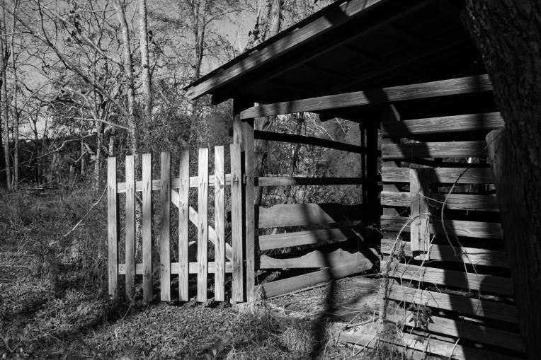 Southern-Shadows